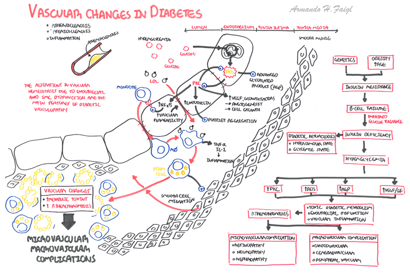 Vascular changes in diabetes